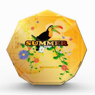 Summer, tropical design awards