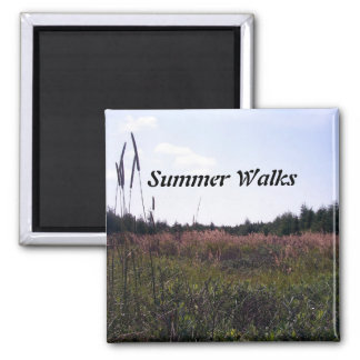 Summer Walks Magnet