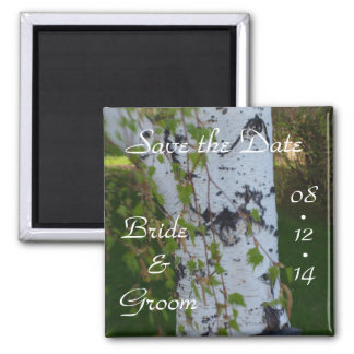 Summer Wedding Birch Tree Save the Date 2 Inch Square Magnet