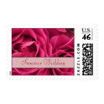 Summer Wedding Stamps - Fuchsia Roses Postage
