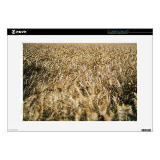 Summer Wheat Field Closeup Farm Photo Decals For Laptops