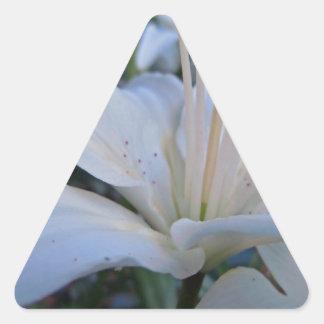 Summer White Lily Triangle Sticker