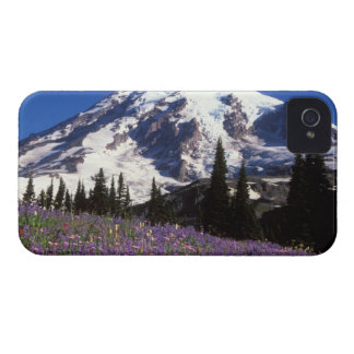 summer wildflowers at the base of Mount Rainier, 2 iPhone 4 Case-Mate Cases