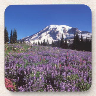summer wildflowers at the base of Mount Rainier, Beverage Coaster