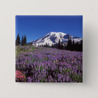 summer wildflowers at the base of Mount Rainier, Button