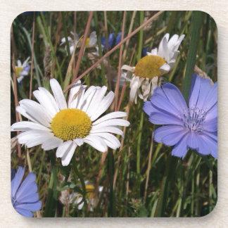 Summer Wildflowers Drink Coasters
