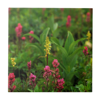Summer Wildflowers Send Forth A Riot Of Color Ceramic Tile