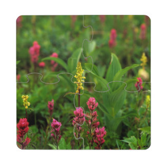 Summer Wildflowers Send Forth A Riot Of Color Puzzle Coaster