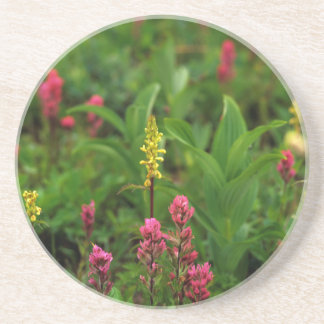 Summer Wildflowers Send Forth A Riot Of Color Sandstone Coaster