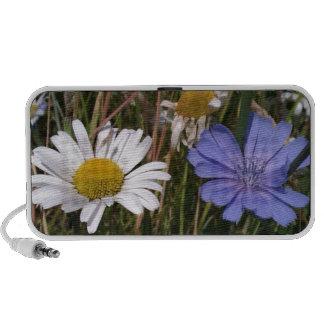 Summer Wildflowers iPod Speaker