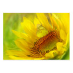 Summer wings, profile card large business cards (Pack of 100)
