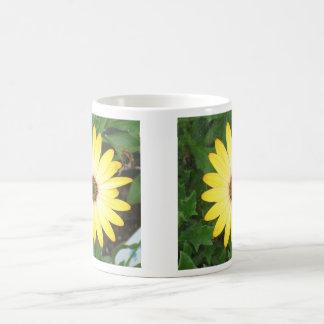 Summer yellow mugs