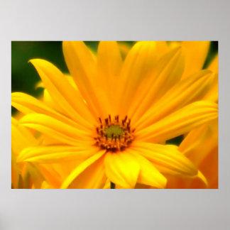 Summer Yellow Poster