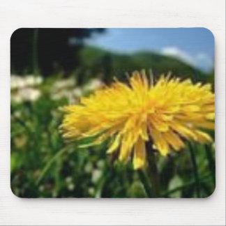 summerflower tapetes de ratón
