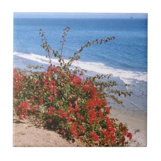 Summerland, California Shore Tile
