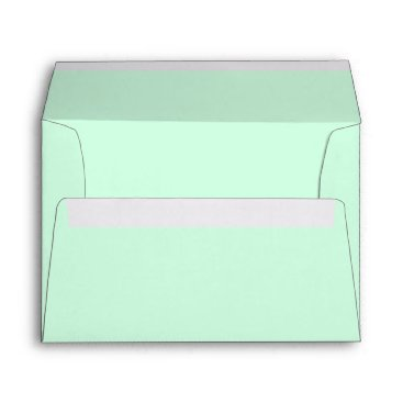 USA Themed Summermint Pastel Green Mint Wedding Envelope