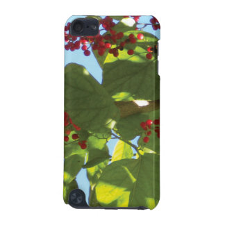 Summers Beauty Speck IPod Case iPod Touch 5G Case