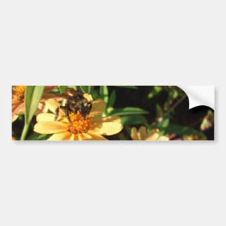Summer's Day Bee on Sunny Yellow Flowers Bumper Sticker