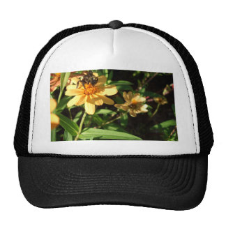 Summer's Day Bee on Sunny Yellow Flowers Trucker Hat