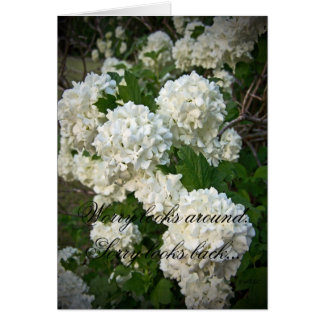 Summer's Snowballs Greeting Card