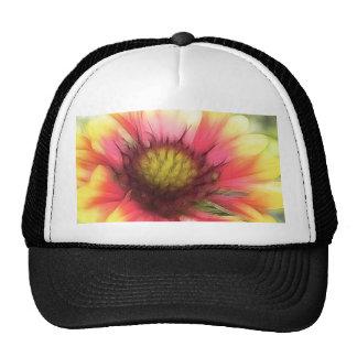 Summer's Star - The Blanket Flower Mesh Hat