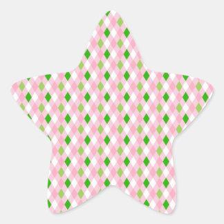 Summertime Fun Pink Lime Green White Argyle Star Sticker