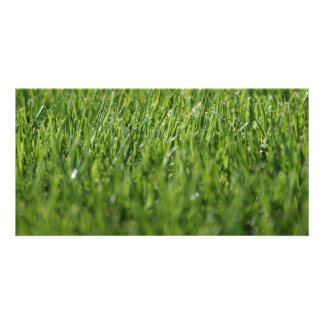 Summertime Grass Photo Card