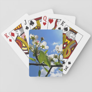 Summertime Playing Cards