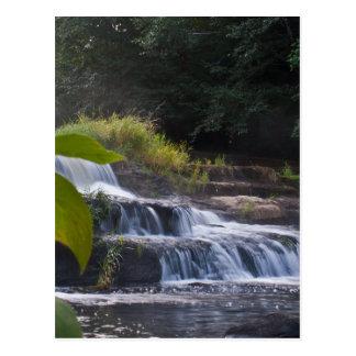 Summertime Siuslaw Falls Postcards