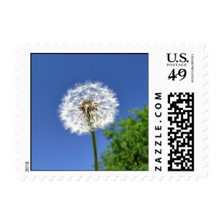 Summertime Stamp
