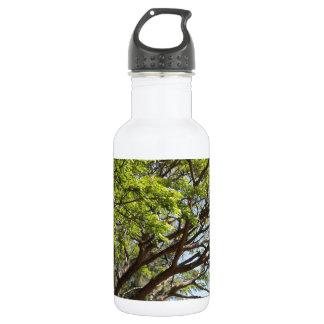 Summertime Tree Photography 18oz Water Bottle
