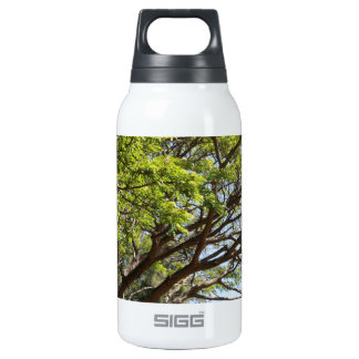 Summertime Tree Photography 10 Oz Insulated SIGG Thermos Water Bottle