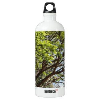 Summertime Tree Photography SIGG Traveler 1.0L Water Bottle