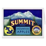 Summit Apples - Vintage Fruit Crate Label