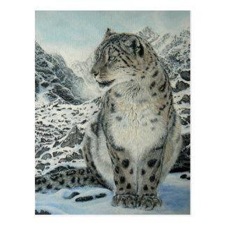 Summit King Snow Leopard postcard