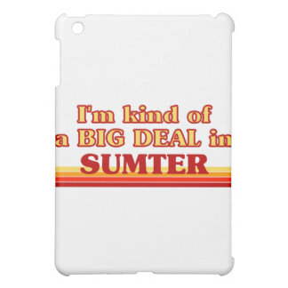 SUMTERaI am kind of a BIG DEAL in Sumter Cover For The iPad Mini