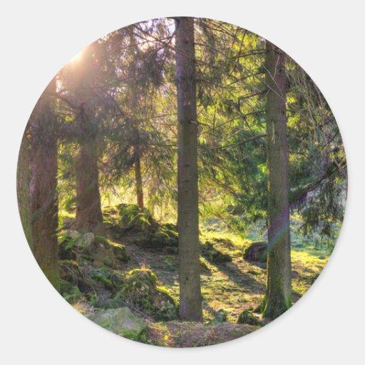 Sun a través de árboles pegatina redonda