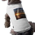 Sun abajo en el lago camisa de perrito