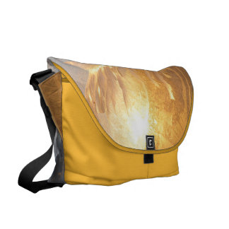 Sun and Frost Messenger Bag