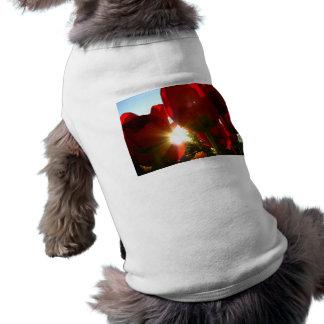 Sun and Red Petals Shirt
