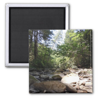 Sun and Shadow in a Creek Bed 2 Inch Square Magnet