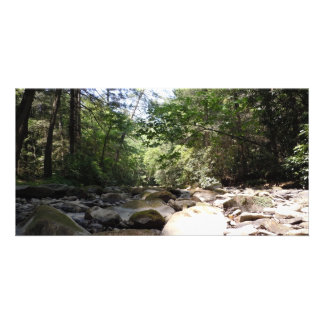 Sun and Shadow in a Creek Bed Card
