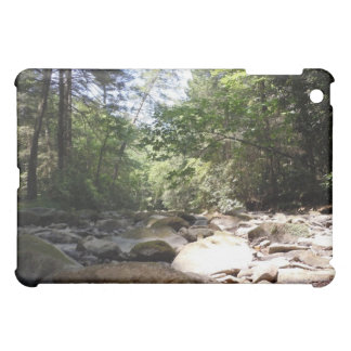 Sun and Shadow in a Creek Bed Cover For The iPad Mini