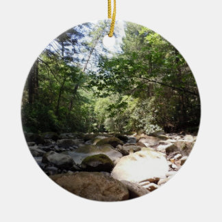 Sun and Shadow in a Creek Bed Christmas Tree Ornaments