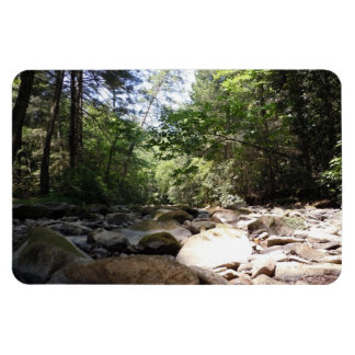 Sun and Shadow in a Creek Bed Rectangular Photo Magnet