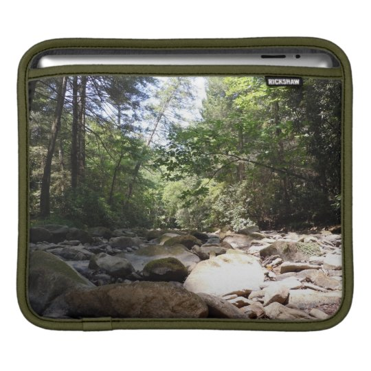 Sun and Shadow in a Creek Bed Sleeve For iPads