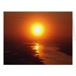 Sun ártico tarjeta de felicitación grande