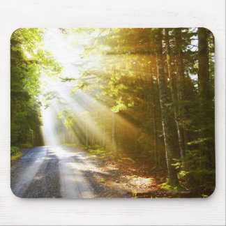 Sun Beams Through Forest in Acadia National Park Mouse Pad