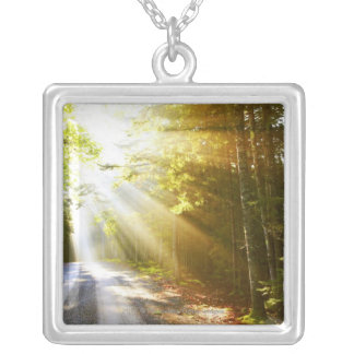 Sun Beams Through Forest in Acadia National Park Silver Plated Necklace
