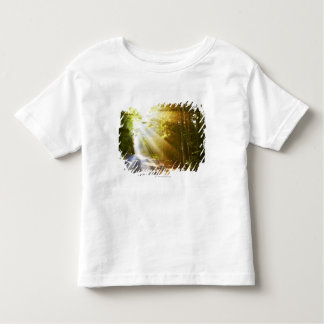 Sun Beams Through Forest in Acadia National Park Toddler T-shirt